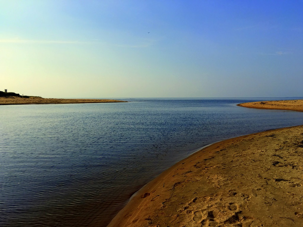 Lagan Mündung Laholm